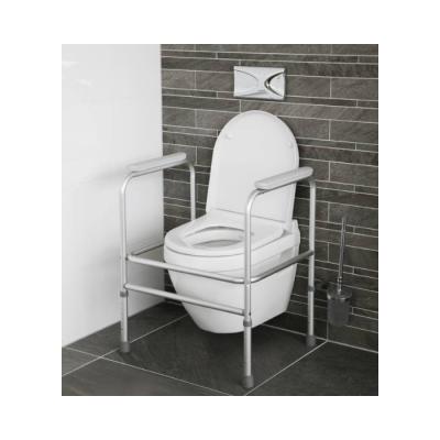 Atlantis Toilet Frame